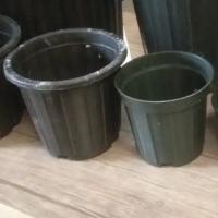 فروش اسیابی گلدان سیاه