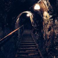 پیامدهای مثبت و منفی افزایش نرخ دلار برای معدنکار