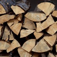 انواع چوب داخلی و خارجی و کاربرد آنها