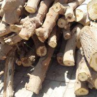 خریدار انواع چوب باغی به صورت تناژ سنگین