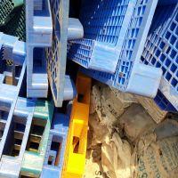 خریدار انواع پالت پلاستیکی در همه رنگ