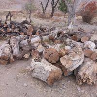 فروش چوب ضایعات
