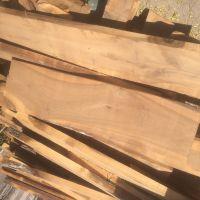 فروش انواع چوبهای ایرانی و خارجی