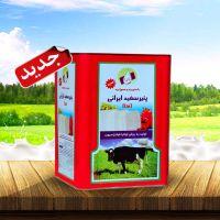 فروش حلب پنیر