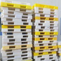 پالت پلاستیکی سالم در حد نو