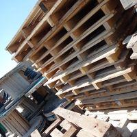 پالت چوبی ۱۱۰۰عدد