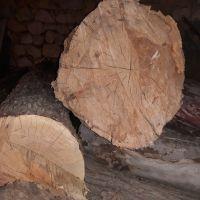 ۸تن چوب خشک چناروکاج قطر۲۵سانت به بالا