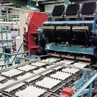 دستگاه شانه تخم مرغ زن اتوماتیک