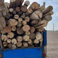 فروش چوب خشک ساختمانی