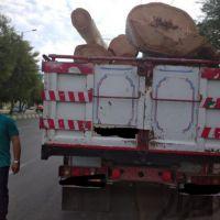 خرید انواع چوب