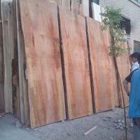 فروش چوب الوار توسکا و جنگلی