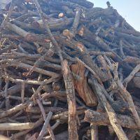 خرید عمده چوب هیزمی در سراسر ایران